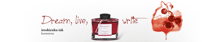 Pilot - Fine writing - Iroshizuku Ink Orange